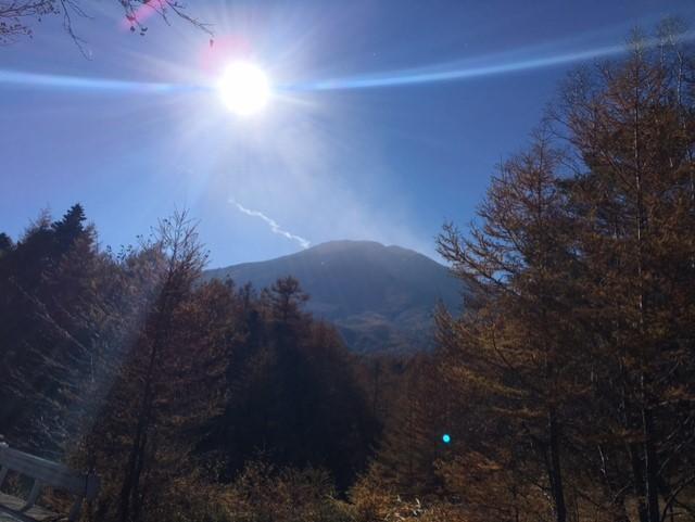富士山 選択基準